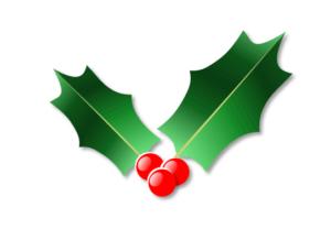 2枚葉のクリスマスホーリー